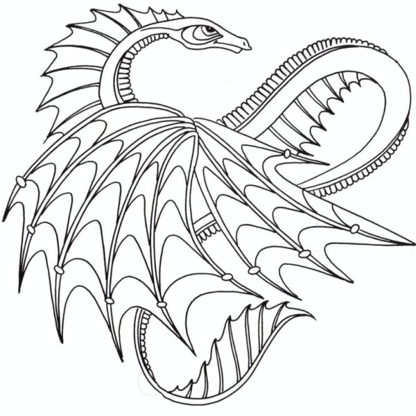 Dragon Coloring Pages For Adults Printable Dragon Coloring Pages Coloringstar