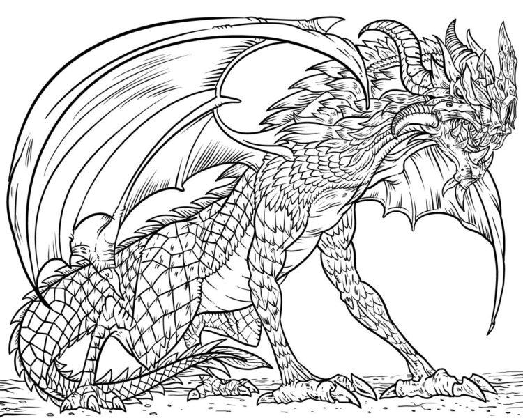 Tranh tô màu con rồng đẹp nhất cho bé tập tô (27)