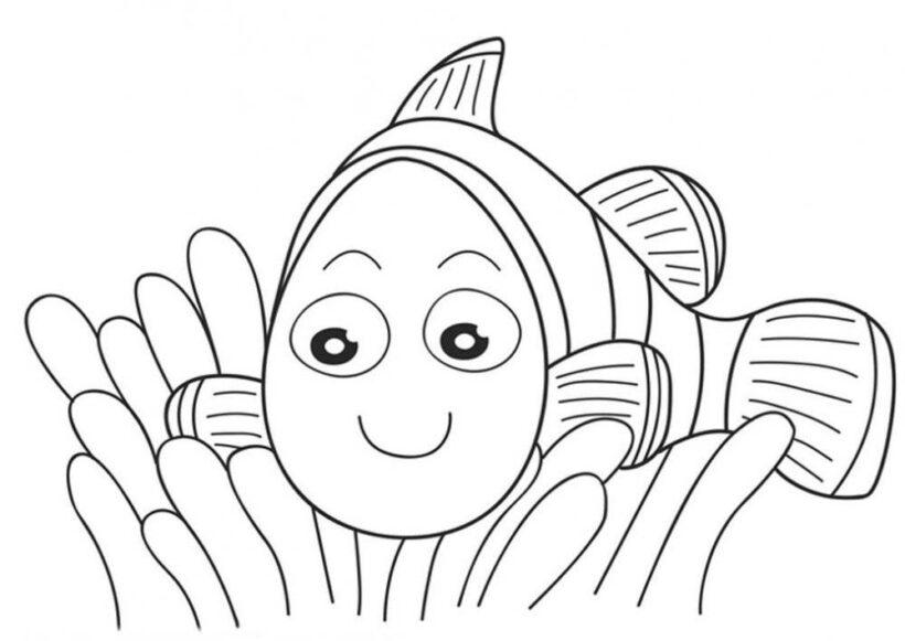Tranh tô màu con vật cho bé tập tô (4)