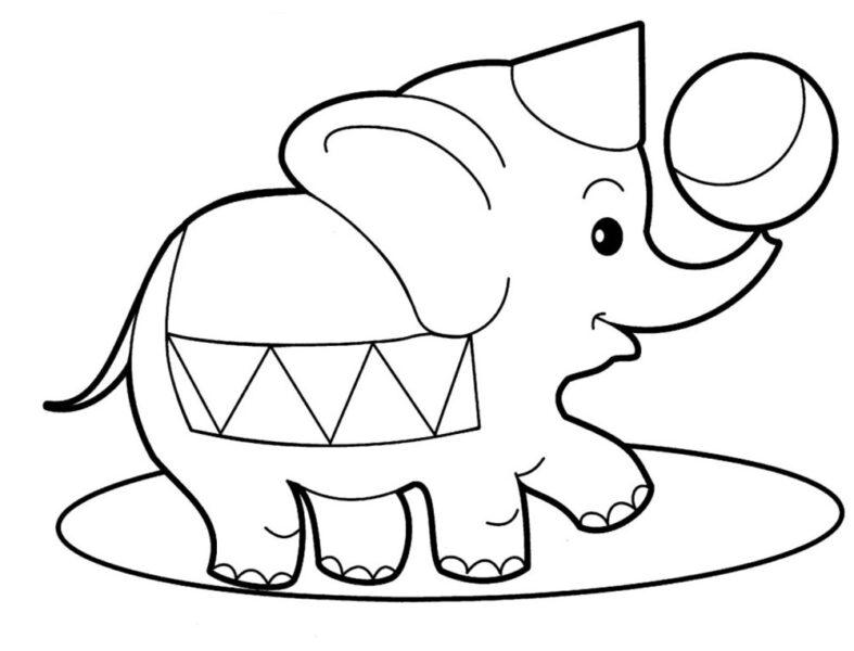 Tranh tô màu con voi đẹp nhất cho bé tập tô (15)