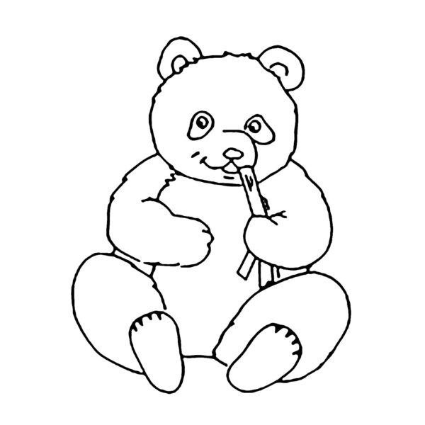 Tranh tô màu gấu trúc