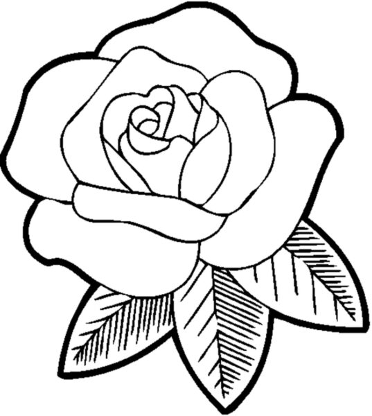printable flower coloring pages for girls Beautiful Rose Flower Coloring Pages For Girls For Flower Coloring Page on