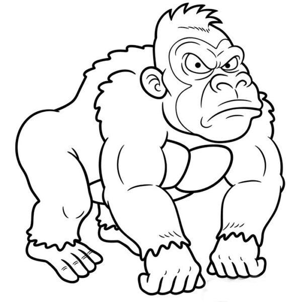 Tranh tô màu khỉ đột
