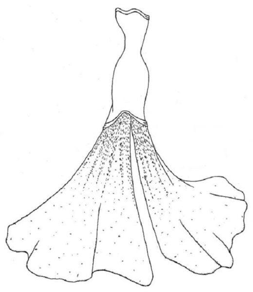 Tranh tô màu váy công chúa đẹp nhất dành tặng bé gái (9)