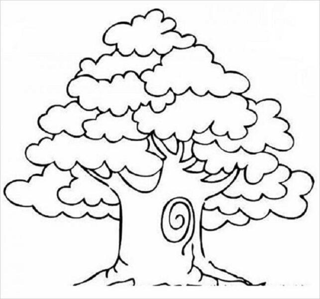 Tranh vẽ cây cổ thụ đẹp