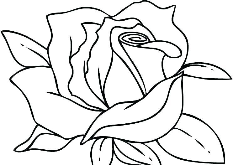 Tranh vẽ chưa tô màu bông hoa đẹp cho bé tập tô (3)