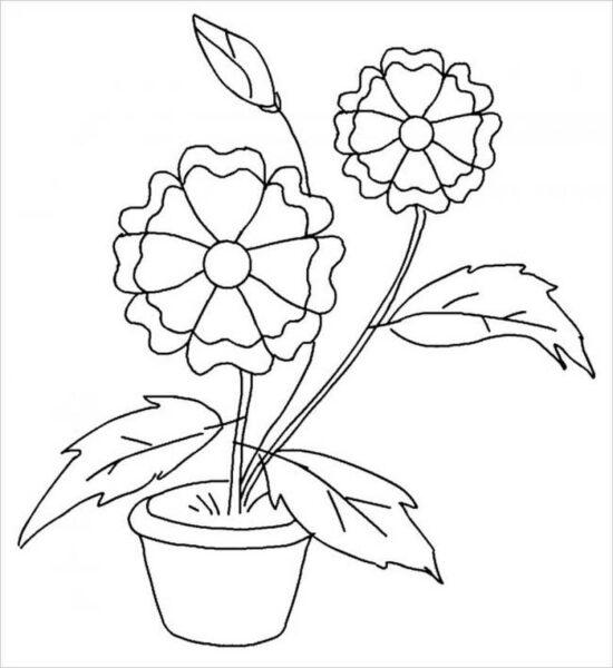 Tranh vẽ chưa tô màu bông hoa đẹp cho bé tập tô (4)
