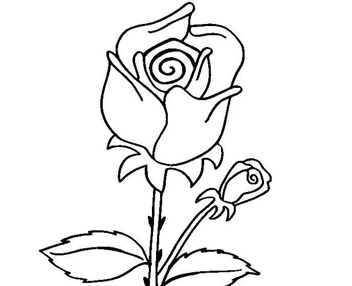 Tranh vẽ chưa tô màu bông hoa đẹp cho bé tập tô (5)