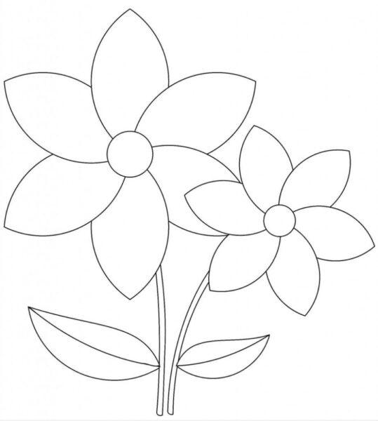 Tranh vẽ chưa tô màu bông hoa đẹp cho bé tập tô (6)
