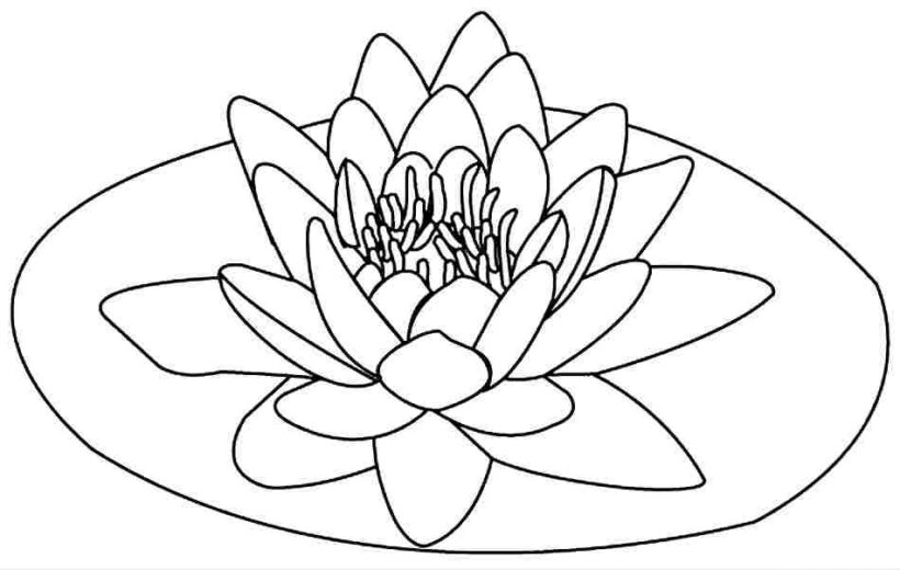 Tranh vẽ chưa tô màu bông hoa đẹp cho bé tập tô (7)