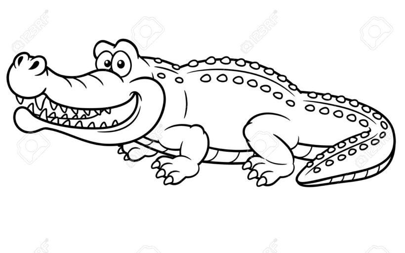 Tranh vẽ chưa tô màu cá sấu đẹp cho bé tập tô (4)