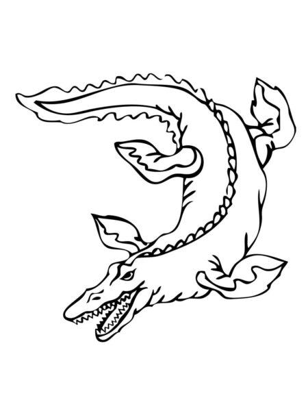 Tranh vẽ chưa tô màu cá sấu đẹp cho bé tập tô (5)