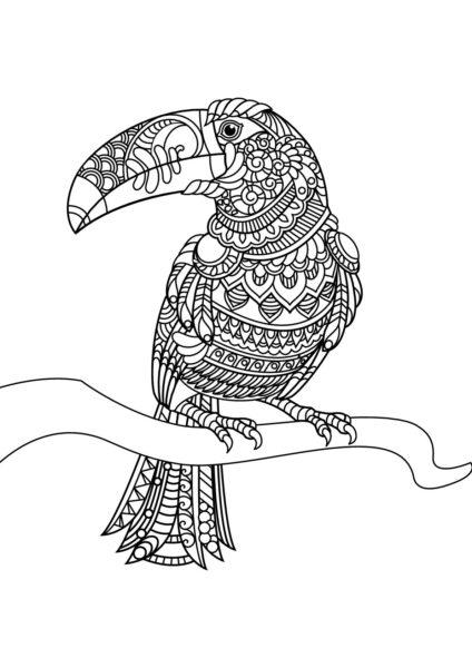 Tranh vẽ chưa tô màu con chim đẹp nhất cho bé tập tô (2)