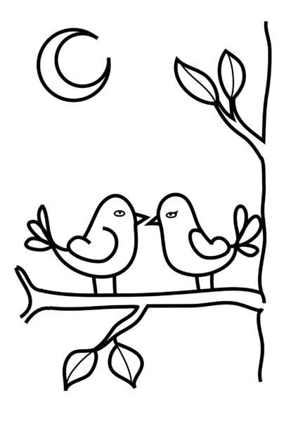 Tranh vẽ chưa tô màu con chim đẹp nhất cho bé tập tô (5)