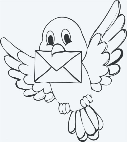 Tranh vẽ chưa tô màu con chim đẹp nhất cho bé tập tô (7)