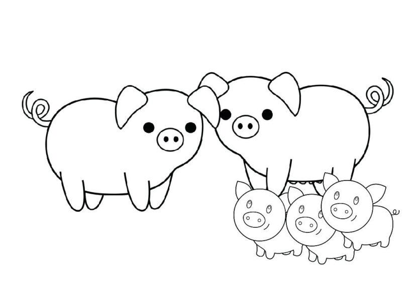 Tranh vẽ chưa tô màu con heo đáng yêu cho bé tập tô (2)
