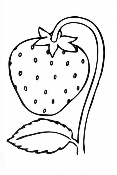 Tranh vẽ chưa tô màu trái cây đẹp cho bé tập tô (4)