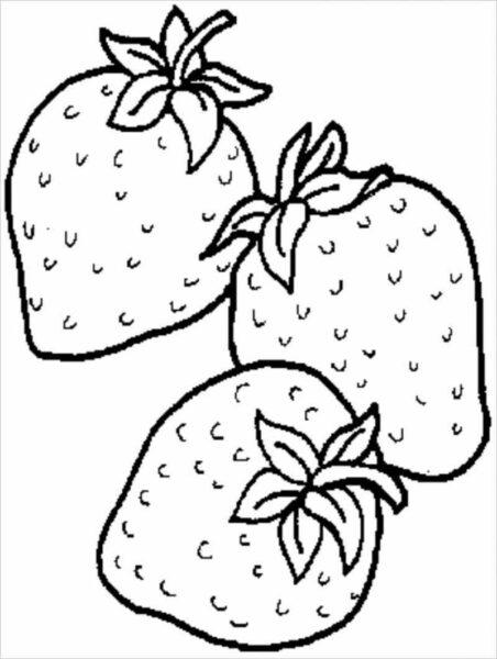 Tranh vẽ chưa tô màu trái cây đẹp cho bé tập tô (7)