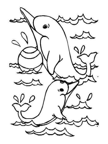 Tranh vẽ đen trắng cá heo đẹp nhất cho bé tô màu (8)