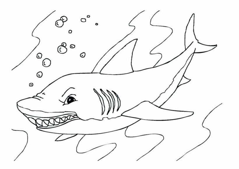 Tranh vẽ đen trắng cá mập cho bé tô màu (1)
