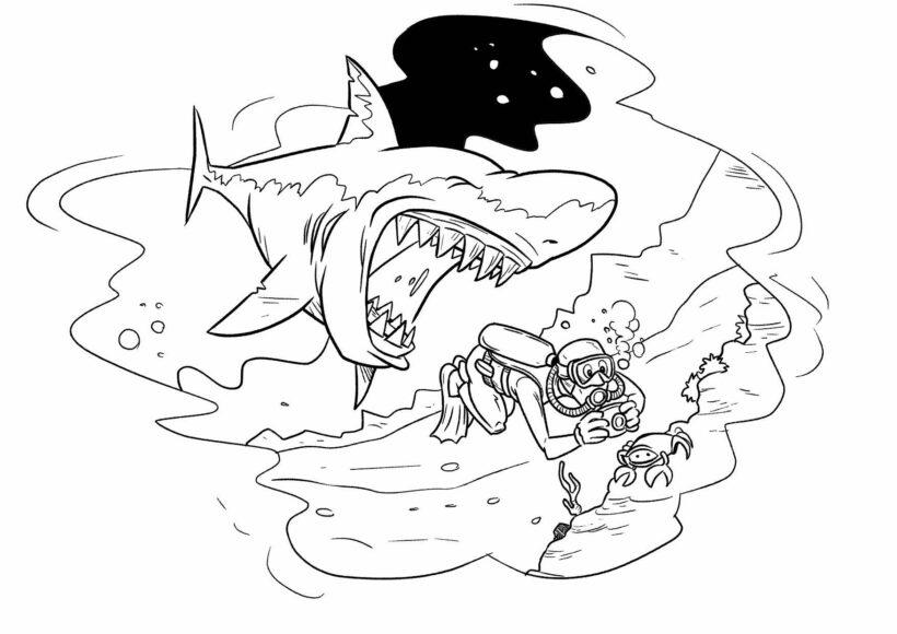 Tranh vẽ đen trắng cá mập cho bé tô màu (7)