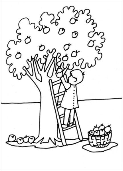 Tranh vẽ đen trắng cây xanh cho bé tô màu (1)