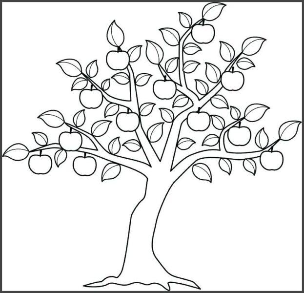 Tranh vẽ đen trắng cây xanh cho bé tô màu (3)
