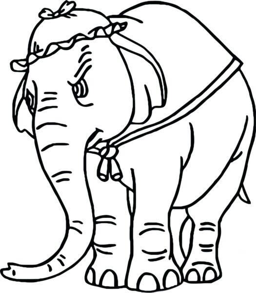 Tranh vẽ đen trắng con voi đáng yêu cho bé tô màu (3)