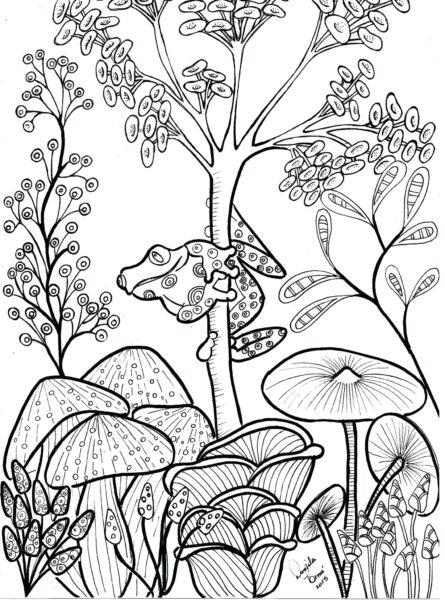 Ảnh vẽ cây nấm đẹp cho bé tập tô (3)