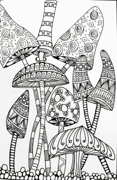 Ảnh vẽ cây nấm đẹp cho bé tập tô (5)