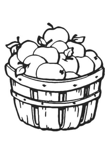Ảnh vẽ quả táo cho bé tập tô (4)
