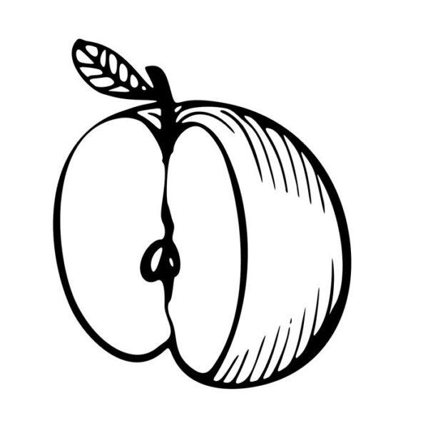 Ảnh vẽ quả táo cho bé tập tô (6)