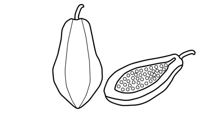 Ảnh vẽ tô màu quả đu đủ đẹp cho bé tập tô (29)