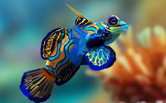 hình ảnh nền con cá