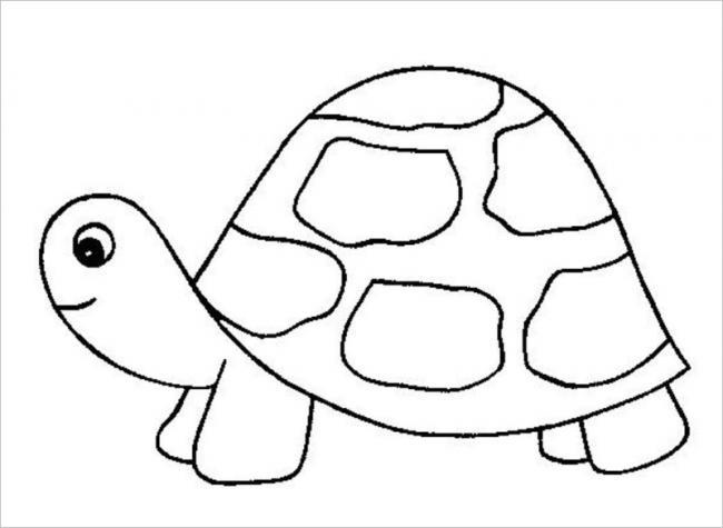 Hình con rùa