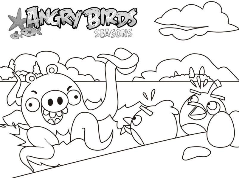 Hình tô màu Angry Birds cho bé tập tô (1)