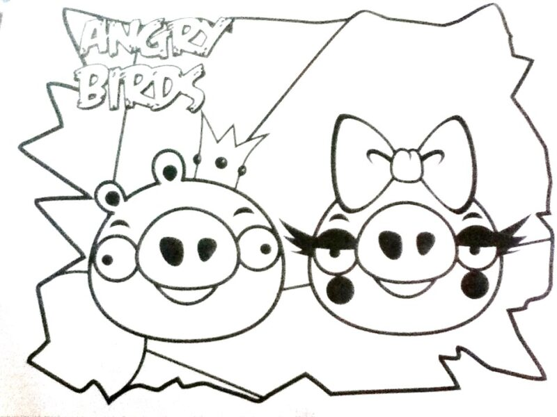 Hình tô màu Angry Birds cho bé tập tô (7)