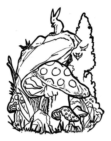 Hình tô màu cây nấm đẹp nhất cho bé tập tô (3)