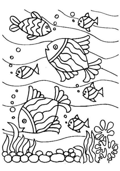 Hình tô màu chú cá vàng đẹp nhất cho bé tập tô (1)