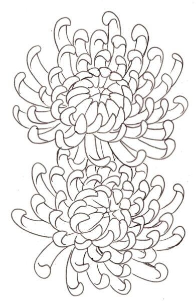Hình tô màu hoa cúc cho bé tập tô (2)