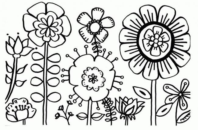 Hình tô màu hoa hướng dương (1)