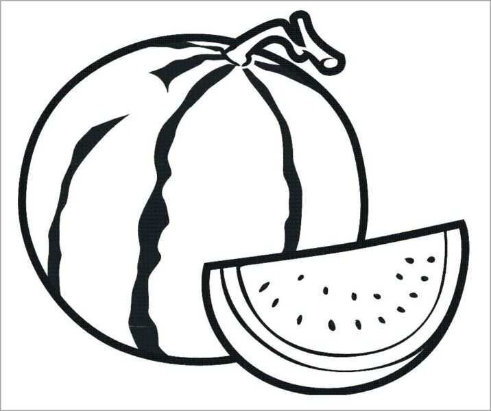 Hình tô màu quả dưa hấu cho bé tập tô (2)