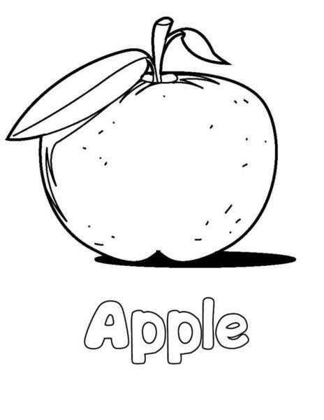 Hình tô màu quả táo đẹp nhất cho bé tập tô (4)