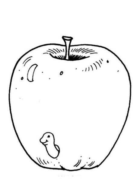 Giadinhsu.com - Tranh tô màu Quả táo cho bé