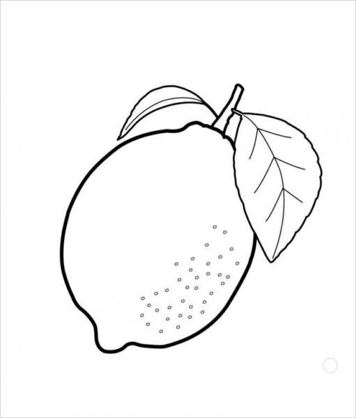Hình tô màu rau củ quả cho bé tập tô (4)