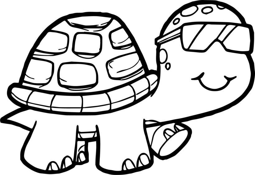 Hình tô mù con rùa cho bé tập tô (1)