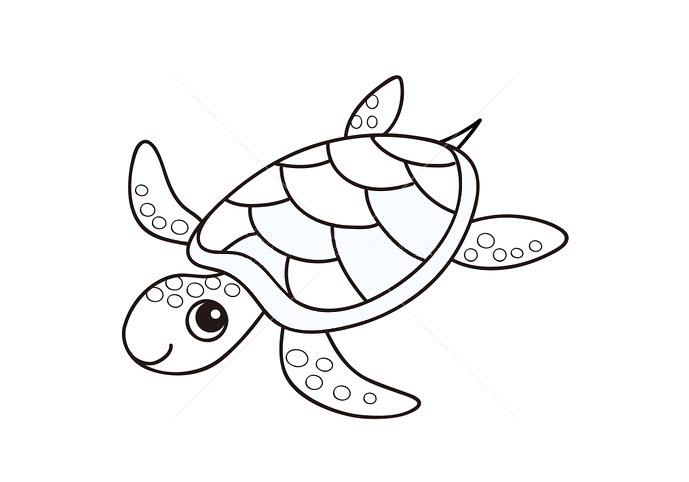 Hình tô mù con rùa cho bé tập tô (4)