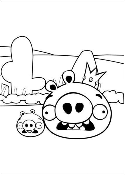 Hình vẽ chưa tô màu Angry Birds cho bé tập tô (1)