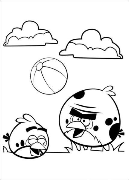 Hình vẽ chưa tô màu Angry Birds cho bé tập tô (2)