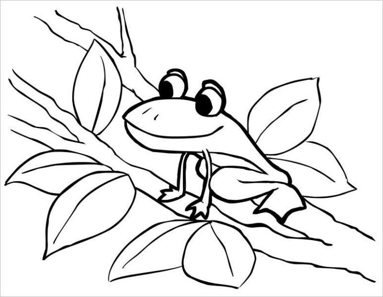 Hình vẽ chưa tô màu con ếch cho bé tập tô (2)